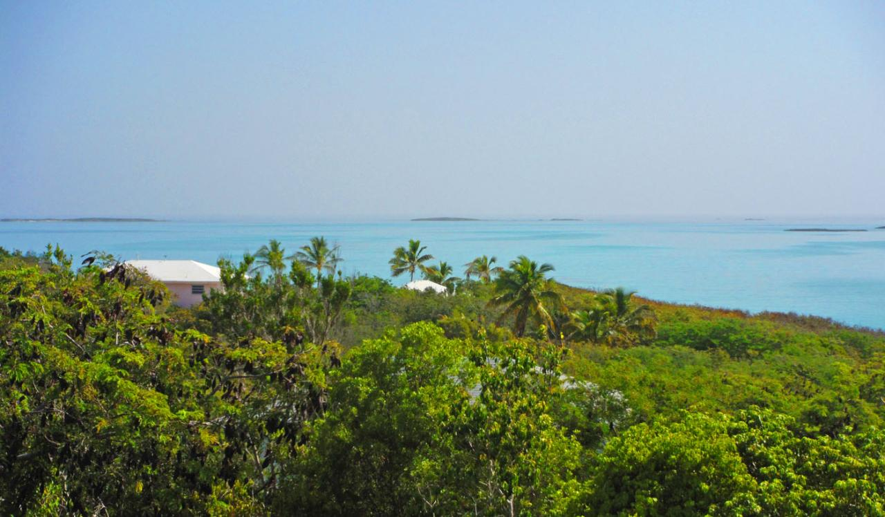 /listing-single-family-home-in-hoopers-bay-38970.html from Coldwell Banker Bahamas Real Estate